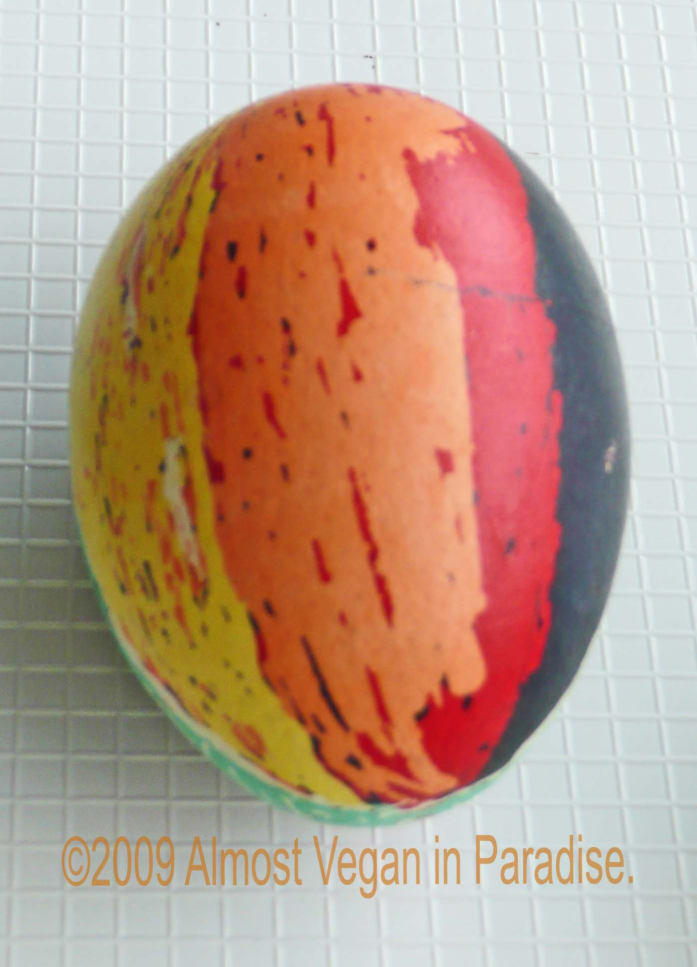 Rafe's egg (the other side was black with stars)