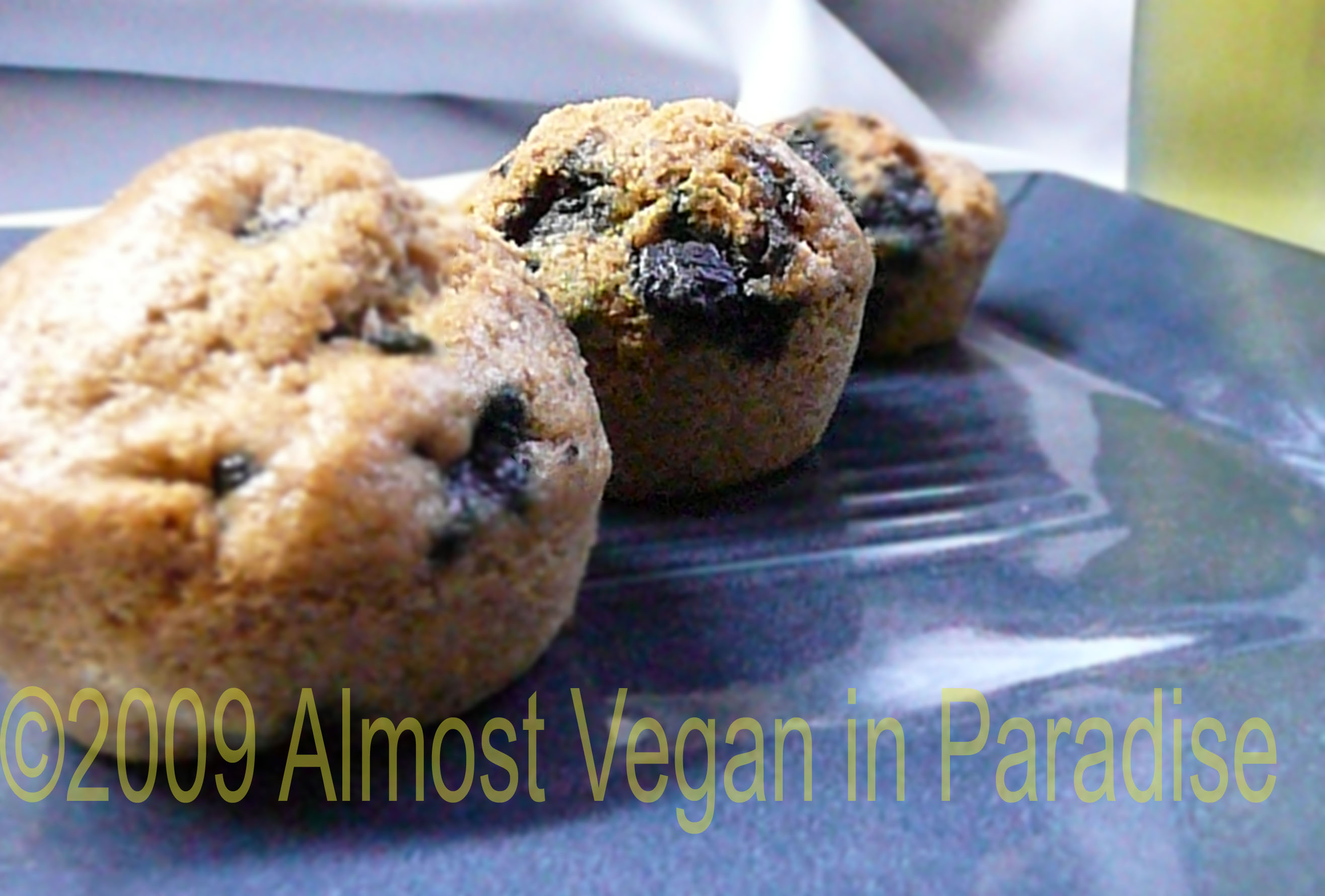 7ee6d723a5 Vegan Blueberry Muffins | Almost Vegan In Paradise